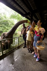 (Atrn Use Only) Child Only - Singapore Zoo Admission & Tram E-Ticket