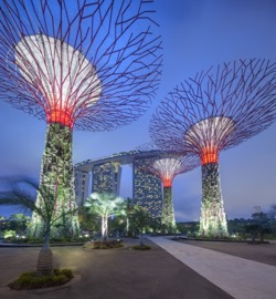 Gardens By The Bay Admission E-Ticket